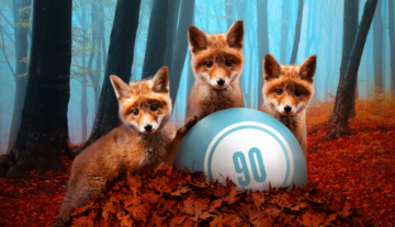 Foxy Bingo app: All kinds of bingo in the palm of your hand
